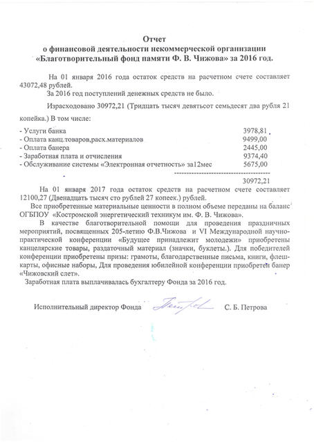 Отчёт фонда Чижова за 2016 года